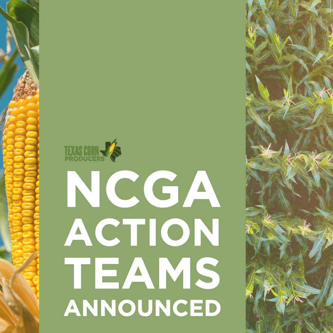 Texas corn farmers to take national appointments