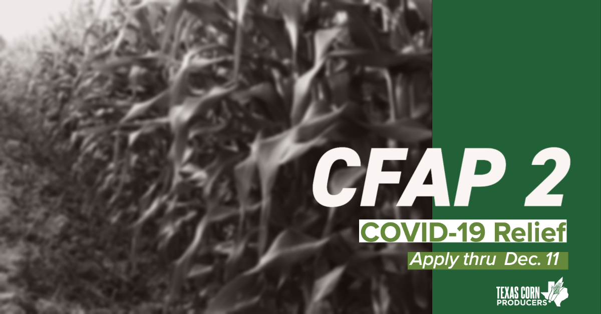 CFAP 2 assistance welcomed by farmers hard-hit in 2020